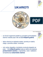 Morfologija_eukariota