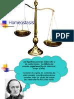 homeostasis3medio-090901105835-phpapp01