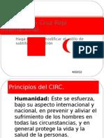 Comité de la Cruz Roja Internacional4