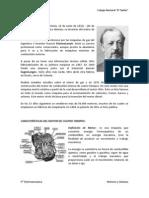 Historia Del Motor. Entregar