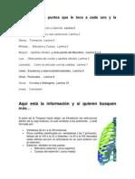 esternon (1)