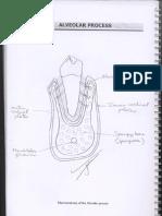 OralHistologyLabManual_2ndSemester
