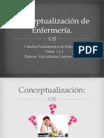 1.1.1.Conceptualización de Enfermería