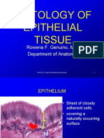 Histology of Epith _med_ June 28 2011