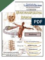 Anatomy - Lec.15