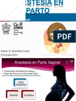 Anestesia Obstetric A Vaginal