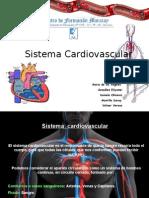Presentación exposición del sistema cardiovascular