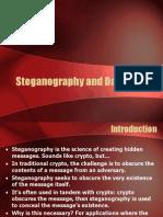 Steganography and Data Hiding