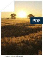 Global Green Capacity - Agricultural Investments Brochure