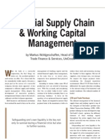 Financial Supply Chain & Working Capital Managment