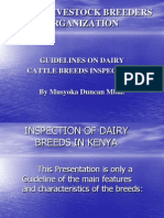 Dairy Breeds Inspects'