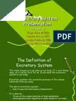 Excretory System Presentation