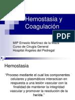 _hemostasia_y_coagulaci__n