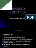 6[1]. APARATO DIGESTIVO II