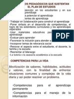 PRINC_PEDAGOGICOS