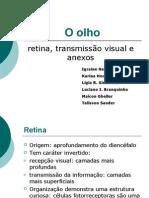 apresentação retina
