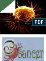 OT Oncology