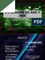 3 1 Genoma Dna Rna