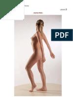 Referencias de Anatomia Humana2
