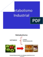 Metabolismo Industrial