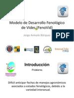 4. Modelo Fenovid