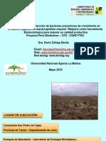 Caracterización y selección de bacterias-Doris Zuñiga
