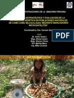 Potencial nutraceútico.Carmen García