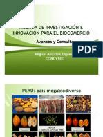 Agenda de investigación (AIIB). M.Ayquipa