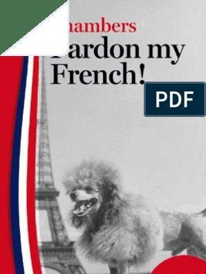 Pardon My French Grammatical Gender Translations