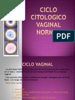 cervicovaginitis y descamacion vaginal