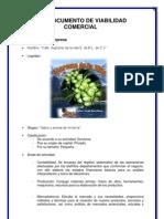 Documento de ad Comercial