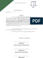 Juicio Sucesorio In Testament a Rio Paulina