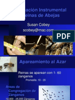 Susan Cobey Inseminación de Abejas Reinas