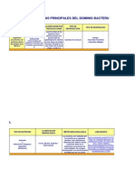 a6u1 Caracteristicas Principales Del Dominio Bacteria