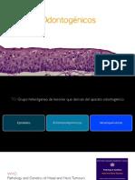 Tumores Odontogénicos parte 1