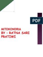 PPT Mitokondria