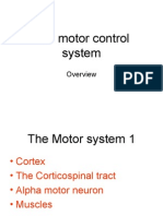 Motor System 1