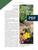 biodiversid_parte_2a