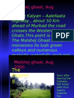 Malshej Ghat in the monsoons