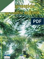 Iapar - Cultivo de Palmito