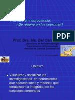 Avances en neurociencias. Regeneración de Neuronas