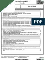 Detroit, Michigan 2010 Census Profile by Data Driven Detroit