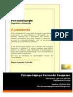 panfleto_fernanda_bengezen