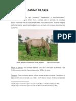 AICSorraia_Padrao