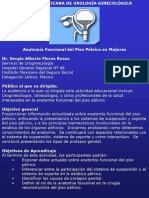 Anatomia Funcional Del Piso Pelvico