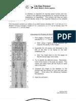 Adult Skeleton