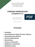VITAMINAS HIDROSSOLÚVEIS_2010