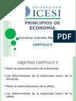Cap 5 Icesi Est (1)