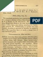 Thysanothecium descrição do genero