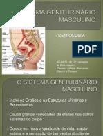SISTEMA GENITURINÁRIO MASCULINO